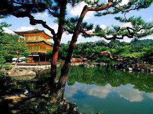 Лечение в Японии: баланс качества и цены
