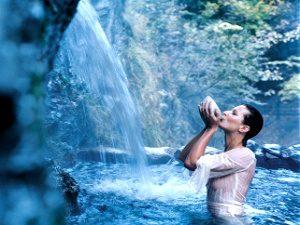 Термальные курорты Венгрии - здоровье от природы