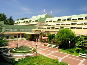 Лучший отель Струньяна - Свобода