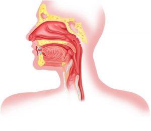 Лечение рака гортани в Германии